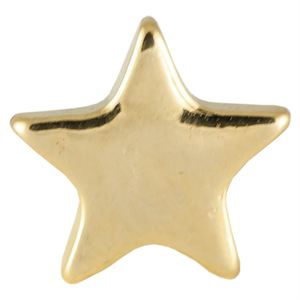 Picture of Gold Star Charm